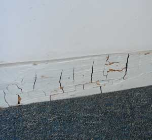 Dry Rot in in a skirting board